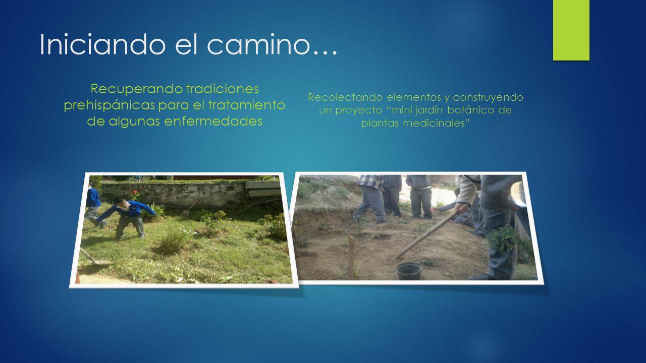Iniciando el camino… Recuperando tradiciones prehispánicas para el tratamiento de algunas enfermedades Recolectando elementos y construyendo un proyec