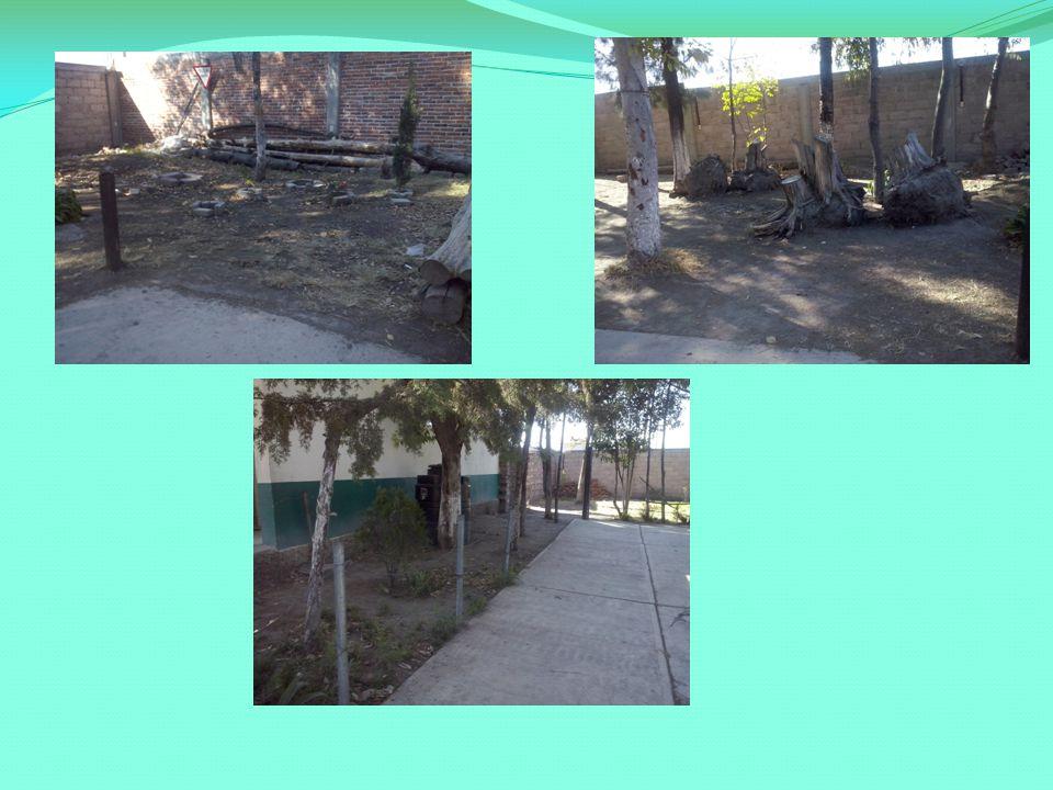 META Lograr que los alumnos amen y cuiden la naturaleza y lograr que nuestra escuela luzca siempre bonita con sus áreas verdes.