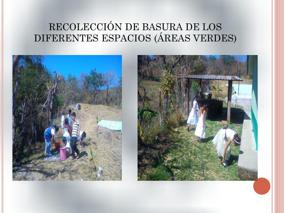 RECOLECCIÓN DE BASURA DE LOS DIFERENTES ESPACIOS (ÁREAS VERDES)