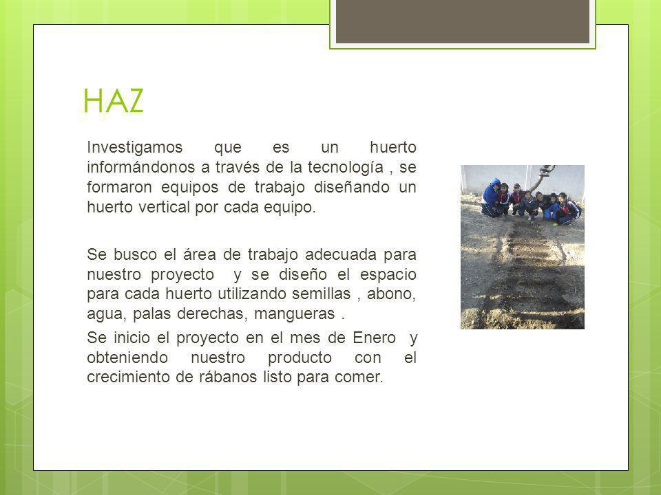 HAZ Investigamos que es un huerto informándonos a través de la tecnología, se formaron equipos de trabajo diseñando un huerto vertical por cada equipo.