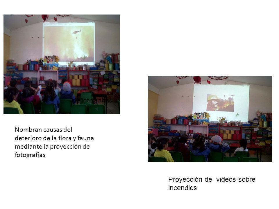Proyección de videos sobre incendios de fotografías Nombran causas del deterioro de la flora y fauna mediante la proyección de fotografías