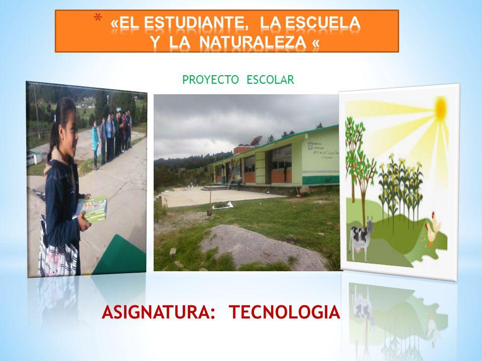 ASIGNATURA: TECNOLOGIA PROYECTO ESCOLAR
