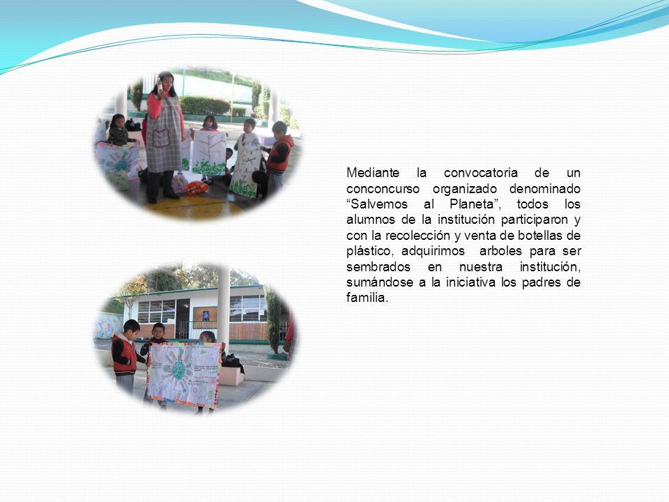 Una parcela en la escuela, una actividad que inspira a los alumnos a la preservación de la naturaleza. Los alumnos reforestan espacios en la escuela,