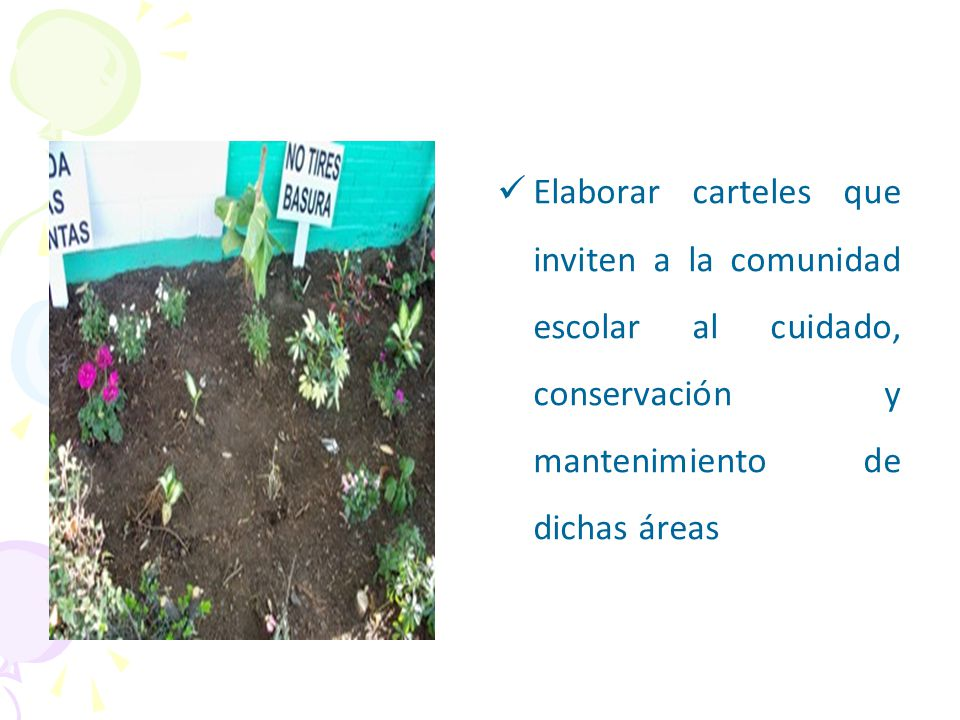 Elaborar carteles que inviten a la comunidad escolar al cuidado, conservación y mantenimiento de dichas áreas