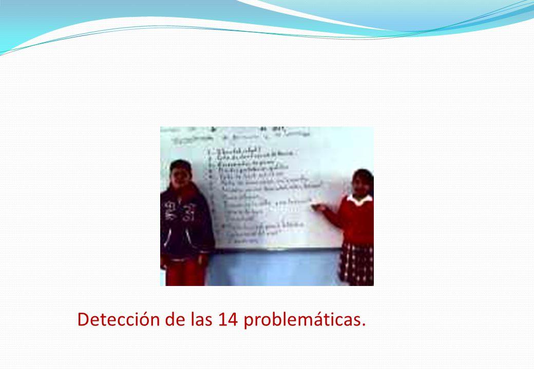 Detección de las 14 problemáticas.