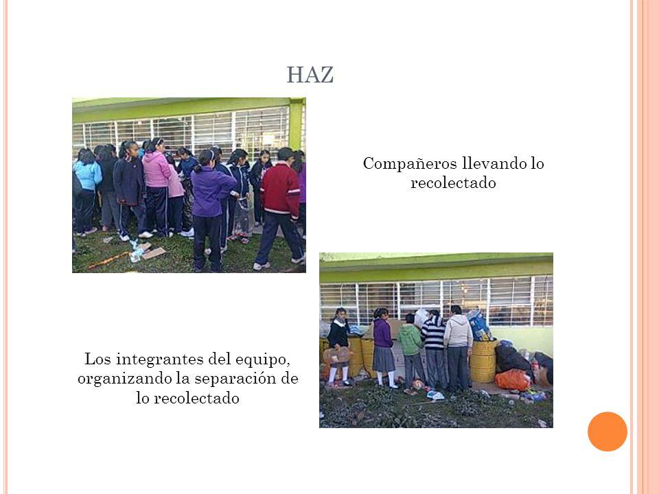 HAZ Los integrantes del equipo, organizando la separación de lo recolectado Compañeros llevando lo recolectado