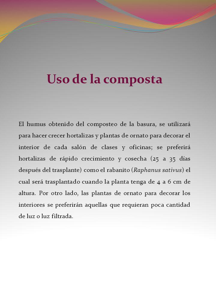 Uso de la composta El humus obtenido del composteo de la basura, se utilizará para hacer crecer hortalizas y plantas de ornato para decorar el interio