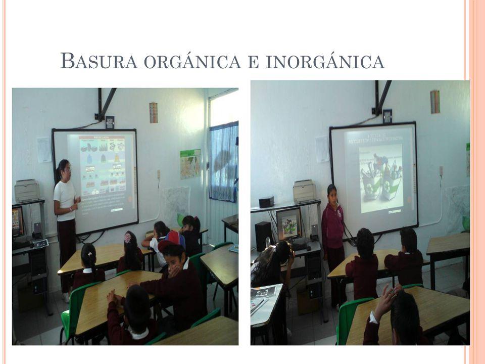 B ASURA ORGÁNICA E INORGÁNICA