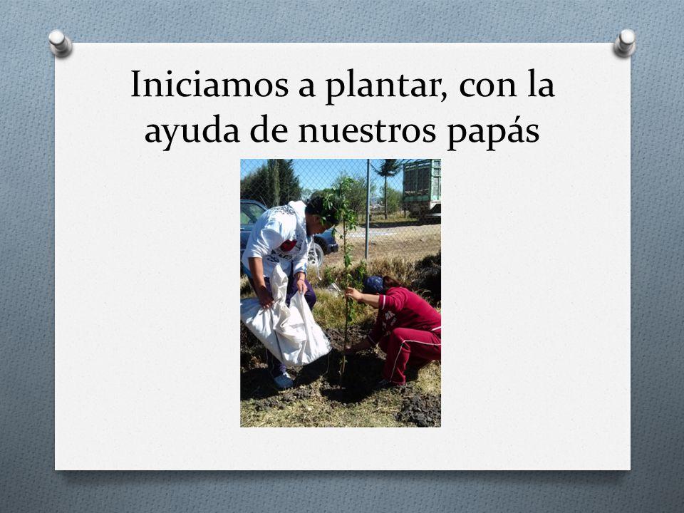 Iniciamos a plantar, con la ayuda de nuestros papás