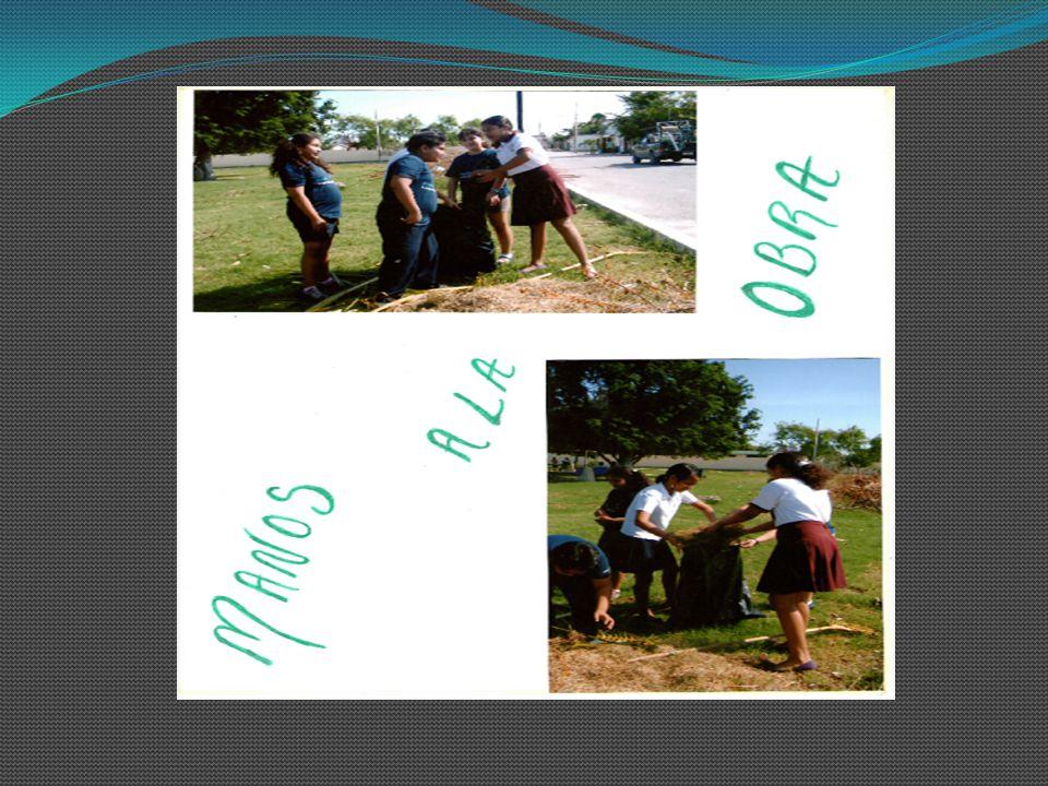 ETAPA: COMPARTE Además de llevar a cabo este proyecto como escuela, también se compartió con otra escuela Secundaria de la región Gabriela Mistral, qu