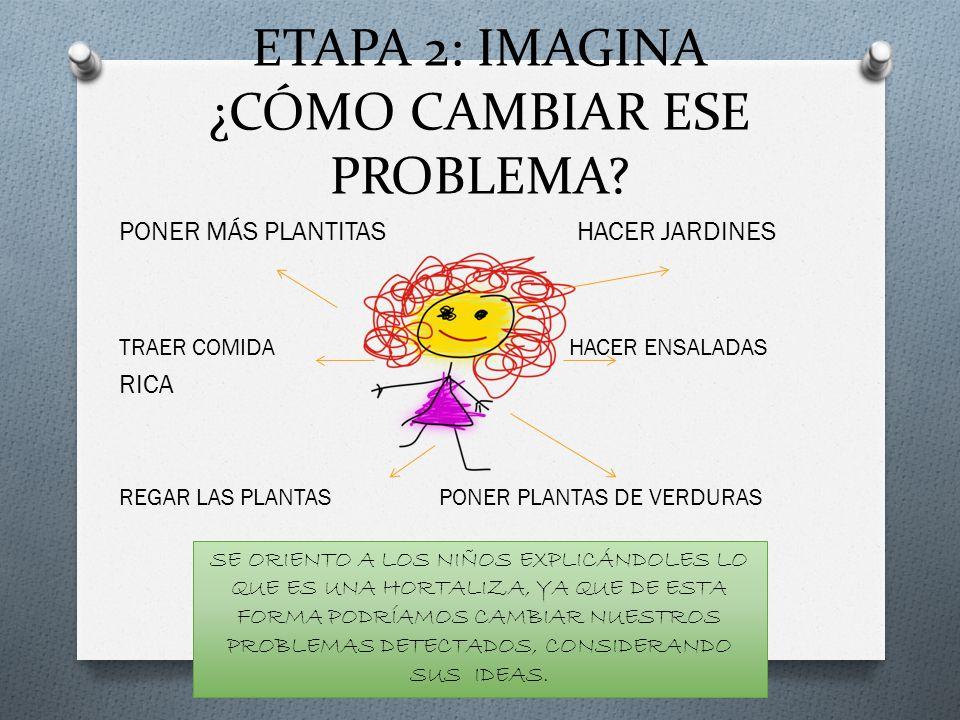 ETAPA 2: IMAGINA ¿CÓMO CAMBIAR ESE PROBLEMA? PONER MÁS PLANTITAS HACER JARDINES TRAER COMIDA HACER ENSALADAS RICA REGAR LAS PLANTAS PONER PLANTAS DE V