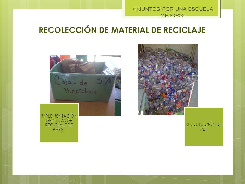 RECOLECCIÓN DE MATERIAL DE RECICLAJE IMPLEMENTACIÓN DE CAJAS DE RECICLAJE DE PAPEL RECOLECCIÓN DE PET >