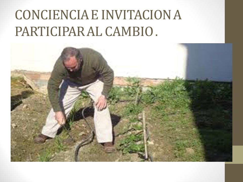 CONCIENCIA E INVITACION A PARTICIPAR AL CAMBIO.