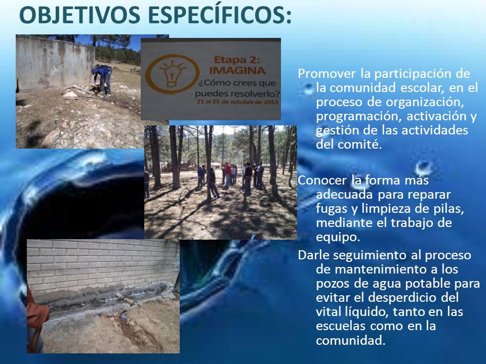 OBJETIVOS ESPECÍFICOS: Promover la participación de la comunidad escolar, en el proceso de organización, programación, activación y gestión de las act