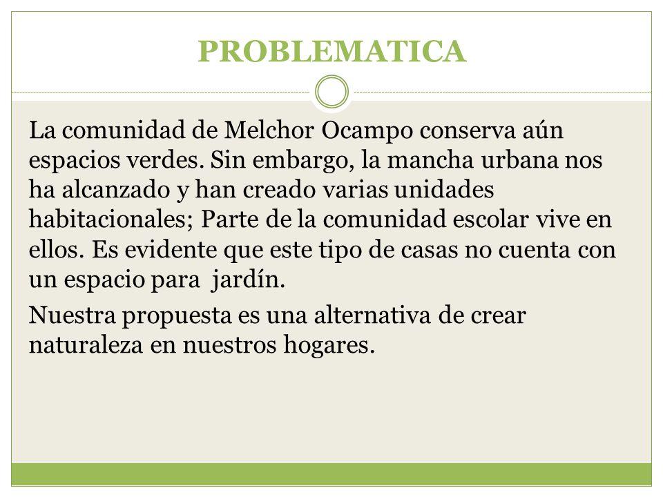 PROBLEMATICA La comunidad de Melchor Ocampo conserva aún espacios verdes.
