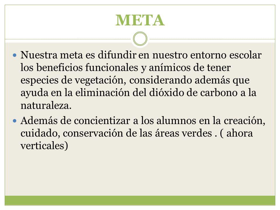 META Nuestra meta es difundir en nuestro entorno escolar los beneficios funcionales y anímicos de tener especies de vegetación, considerando además que ayuda en la eliminación del dióxido de carbono a la naturaleza.