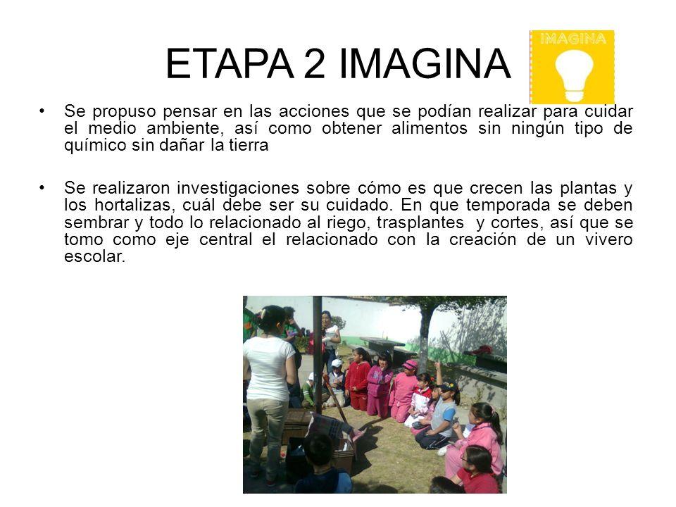 ETAPA 2 IMAGINA Se propuso pensar en las acciones que se podían realizar para cuidar el medio ambiente, así como obtener alimentos sin ningún tipo de