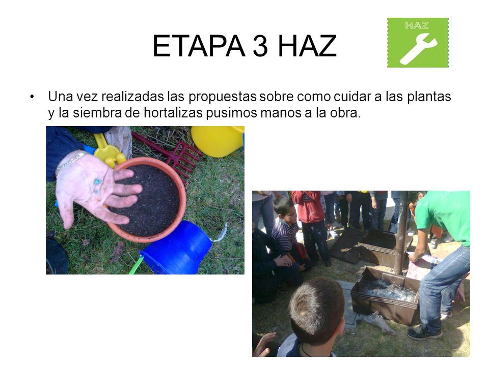 ETAPA 3 HAZ Una vez realizadas las propuestas sobre como cuidar a las plantas y la siembra de hortalizas pusimos manos a la obra.
