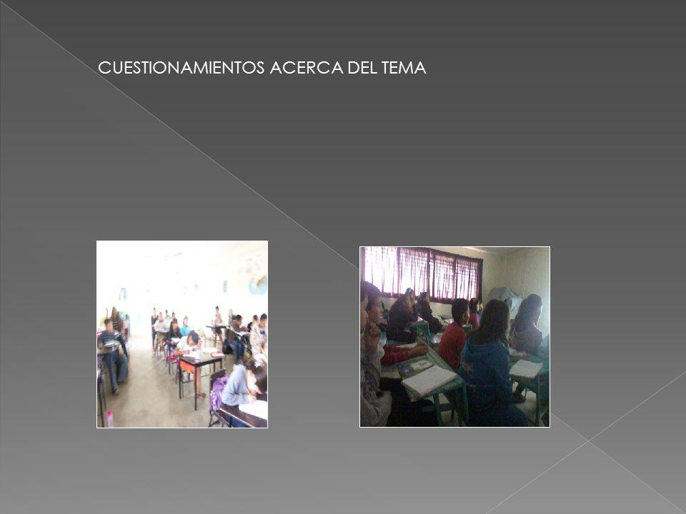 CUESTIONAMIENTOS ACERCA DEL TEMA