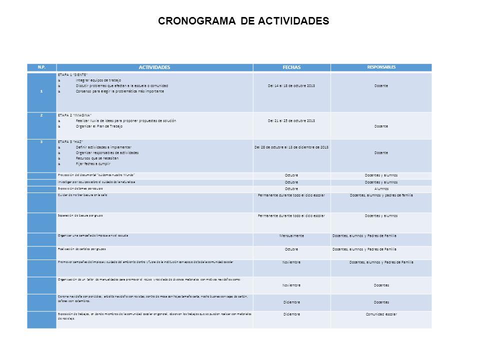 CRONOGRAMA DE ACTIVIDADES N.P.