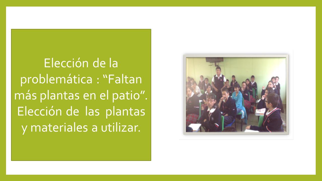 Elección de la problemática : Faltan más plantas en el patio. Elección de las plantas y materiales a utilizar.