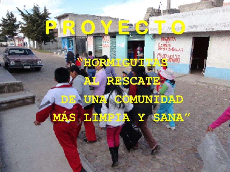 P R O Y E C T O HORMIGUITAS AL RESCATE DE UNA COMUNIDAD MÁS LIMPIA Y SANA