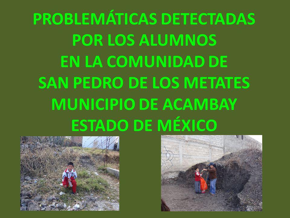 PROBLEMÁTICAS DETECTADAS POR LOS ALUMNOS EN LA COMUNIDAD DE SAN PEDRO DE LOS METATES MUNICIPIO DE ACAMBAY ESTADO DE MÉXICO