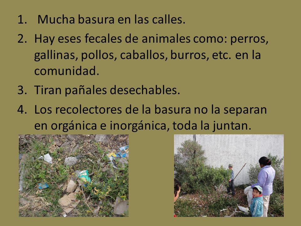 1. Mucha basura en las calles. 2.Hay eses fecales de animales como: perros, gallinas, pollos, caballos, burros, etc. en la comunidad. 3.Tiran pañales