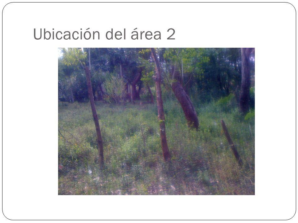 Ubicación del área 2