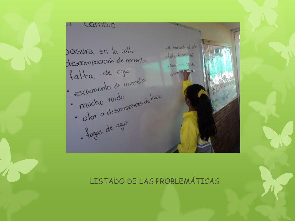 LISTADO DE LAS PROBLEMÁTICAS