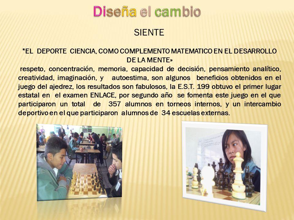 Se convocó a un total de 497 jóvenes para aprender y practicar el juego de ajedrez mismos que participaron en 9 torneos organizados del 15 de septiembre del 2013 al 24 de enero del 2014.