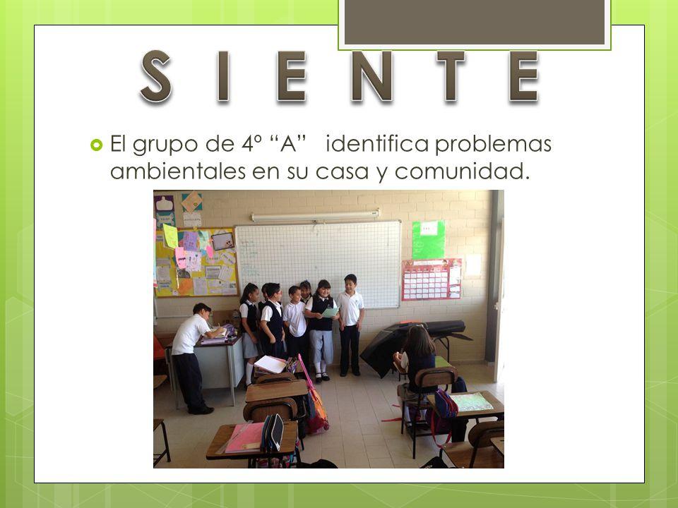 El grupo de 4º A identifica problemas ambientales en su casa y comunidad.