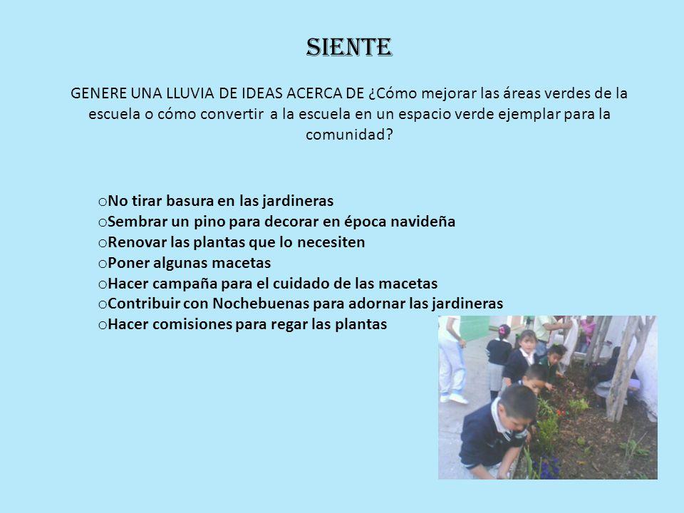 Siente GENERE UNA LLUVIA DE IDEAS ACERCA DE ¿Cómo mejorar las áreas verdes de la escuela o cómo convertir a la escuela en un espacio verde ejemplar pa