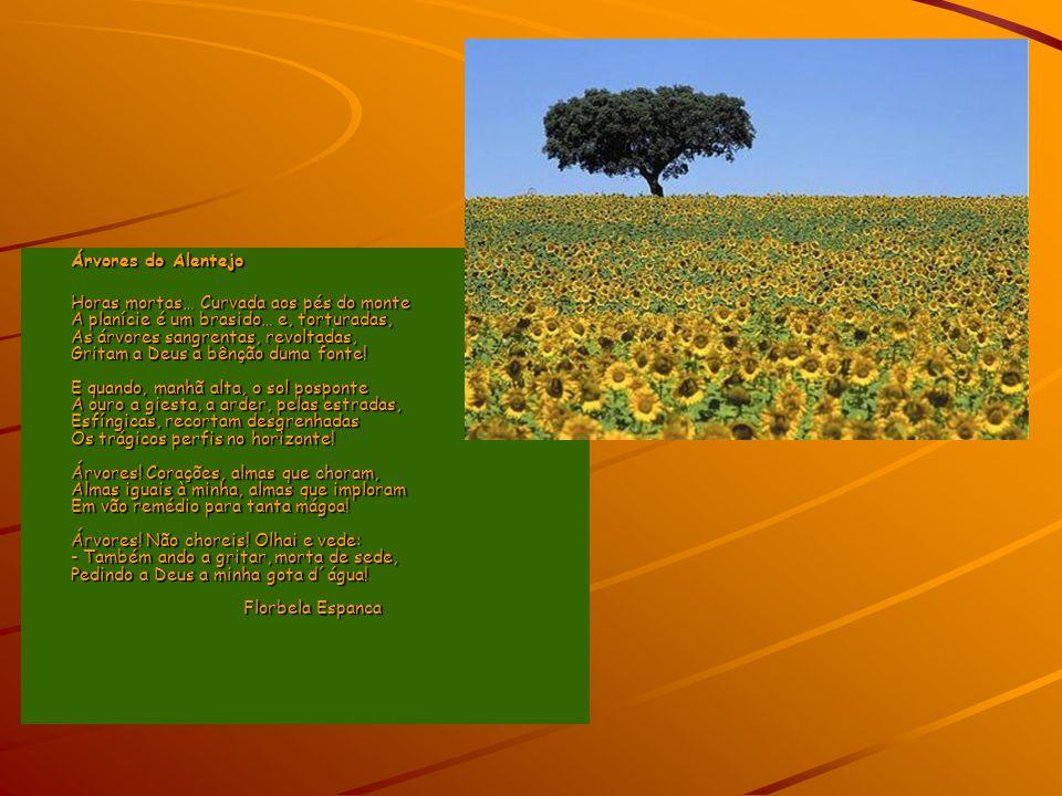 Árvores do Alentejo Horas mortas… Curvada aos pés do monte A planície é um brasido… e, torturadas, As árvores sangrentas, revoltadas, Gritam a Deus a