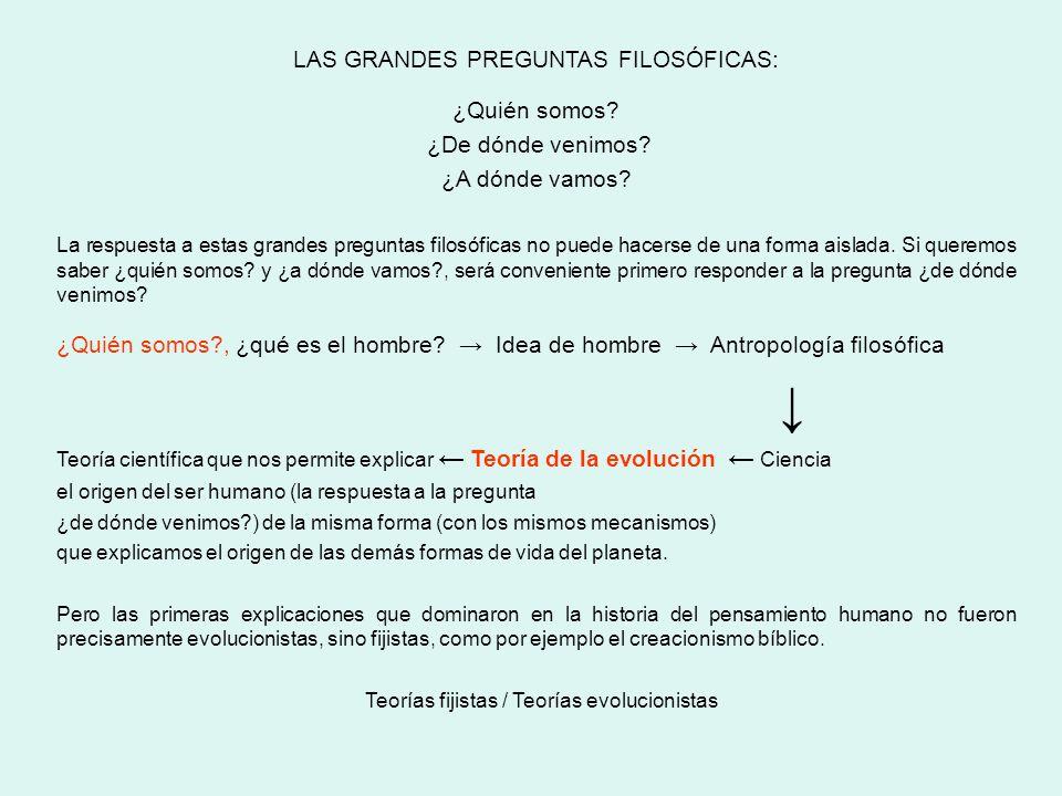 BLOQUE III: O SER HUMANO. Unidade 7: Filoxénese, antropoxénese e socioxénese.
