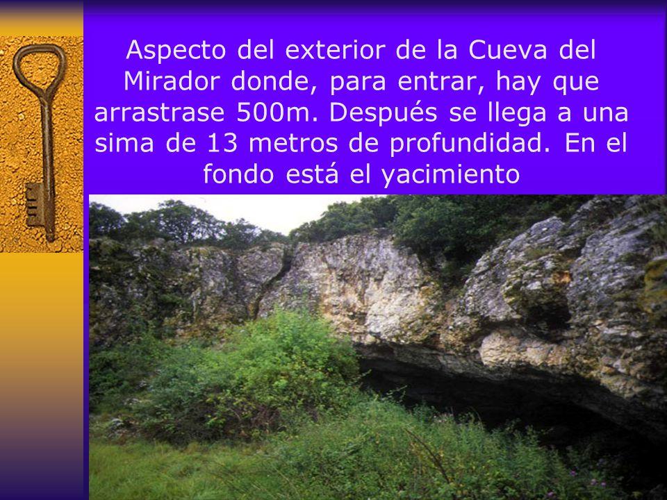 En el yacimiento Sima de los Huesos se han hallado restos que permiten conocer las características físicas y morfológicas de los homínidos que poblaron la Sierra hace más de 350.000 años