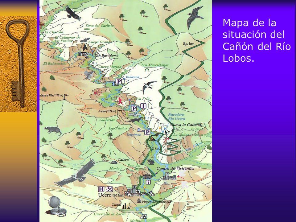 El Centro de interpretación permite realizar una visita didáctica en la que nos explicarán la flora, fauna y geología del cañón, para disfrutar aún más del posterior paseo por el Parque