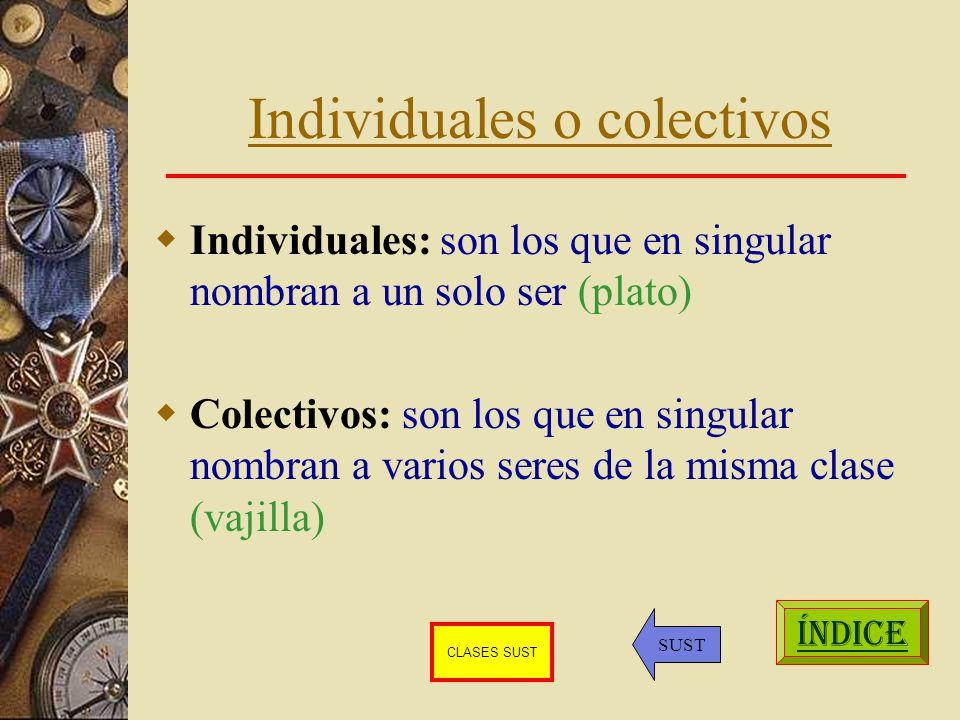 Individuales o colectivos Individuales: son los que en singular nombran a un solo ser (plato) Colectivos: son los que en singular nombran a varios seres de la misma clase (vajilla) ÍNDICE SUST CLASES SUST
