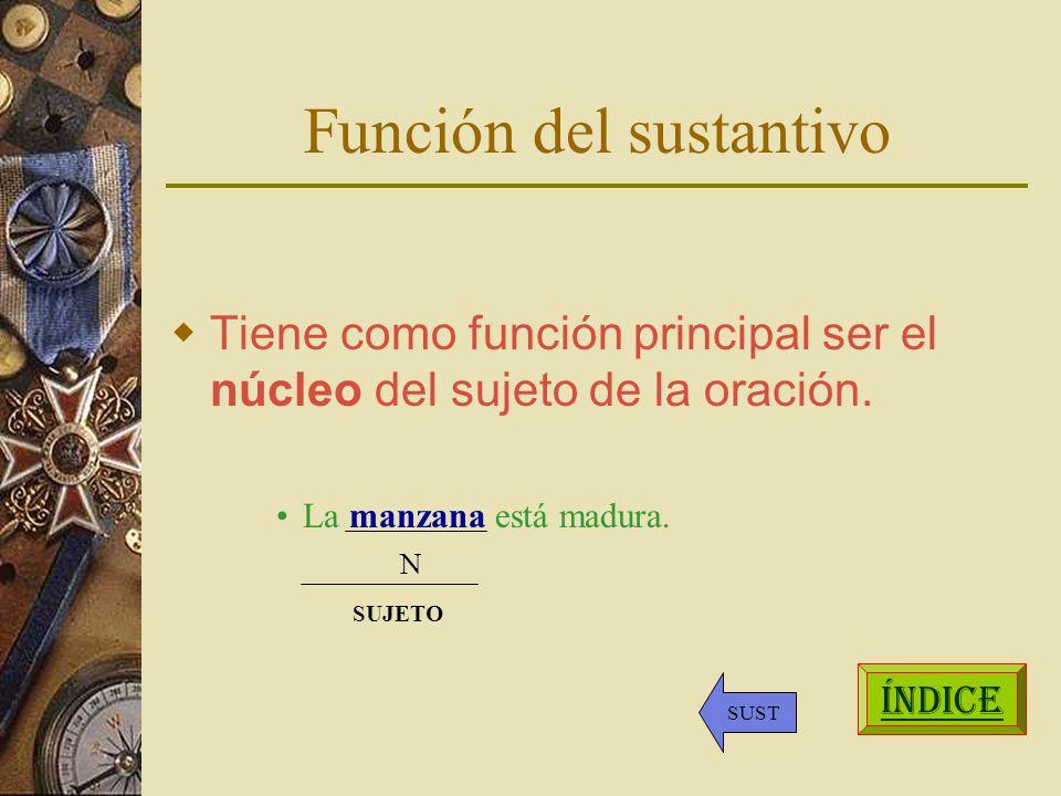 Función del sustantivo Tiene como función principal ser el núcleo del sujeto de la oración.