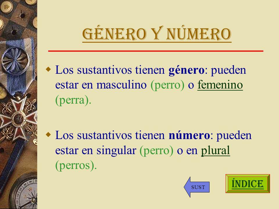 Género y número Los sustantivos tienen género: pueden estar en masculino (perro) o femenino (perra).femenino Los sustantivos tienen número: pueden estar en singular (perro) o en plural (perros).plural ÍNDICE SUST