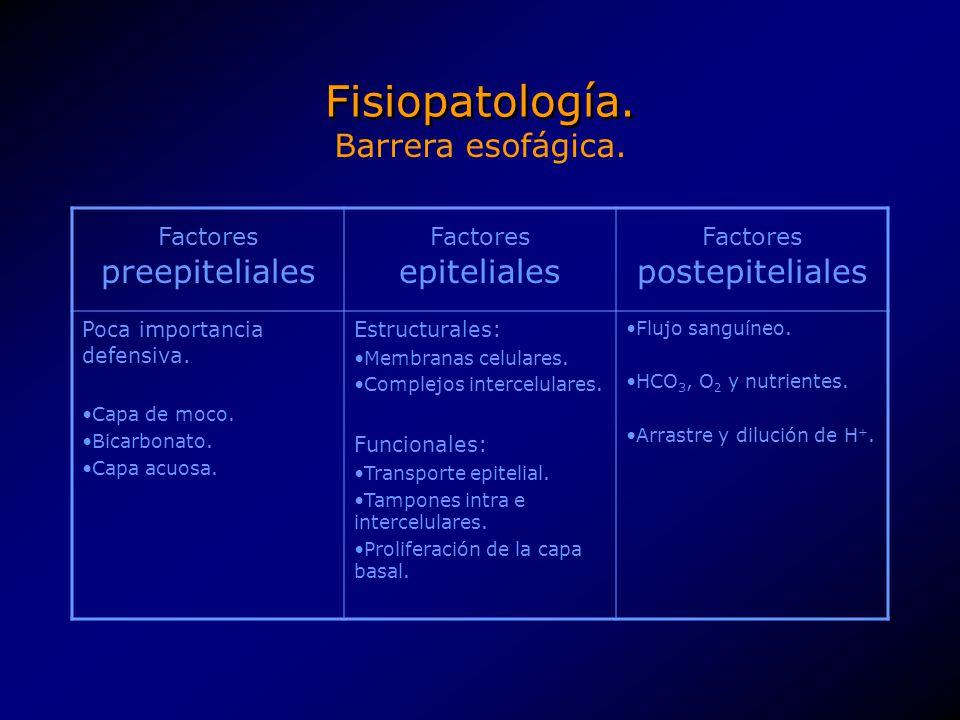 Fisiopatología. Factores preepiteliales Factores epiteliales Factores postepiteliales Poca importancia defensiva. Capa de moco. Bicarbonato. Capa acuo