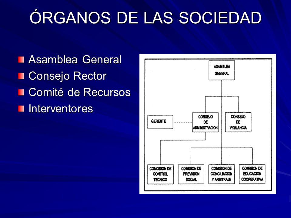 ÓRGANOS DE LAS SOCIEDAD Asamblea General Consejo Rector Comité de Recursos Interventores
