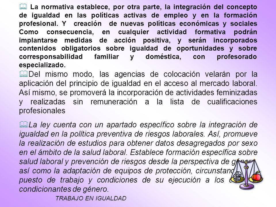 Del mismo modo, las agencias de colocación velarán por la aplicación del principio de igualdad en el acceso al mercado laboral.