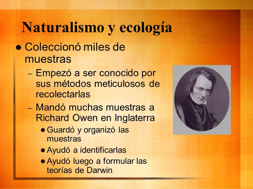 Naturalismo y ecología Coleccionó miles de muestras – Empezó a ser conocido por sus métodos meticulosos de recolectarlas – Mandó muchas muestras a Ric