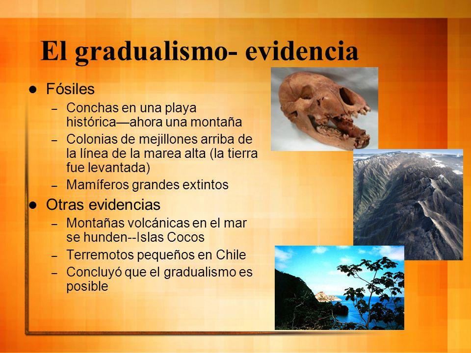 El gradualismo- evidencia Fósiles – Conchas en una playa históricaahora una montaña – Colonias de mejillones arriba de la línea de la marea alta (la t