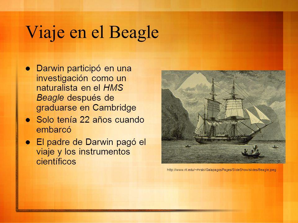 Viaje en el Beagle Darwin participó en una investigación como un naturalista en el HMS Beagle después de graduarse en Cambridge Solo tenía 22 años cua
