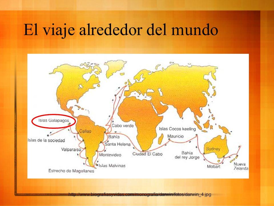 El viaje alrededor del mundo http://www.biografiasyvidas.com/monografia/darwin/fotos/darwin_4.jpg