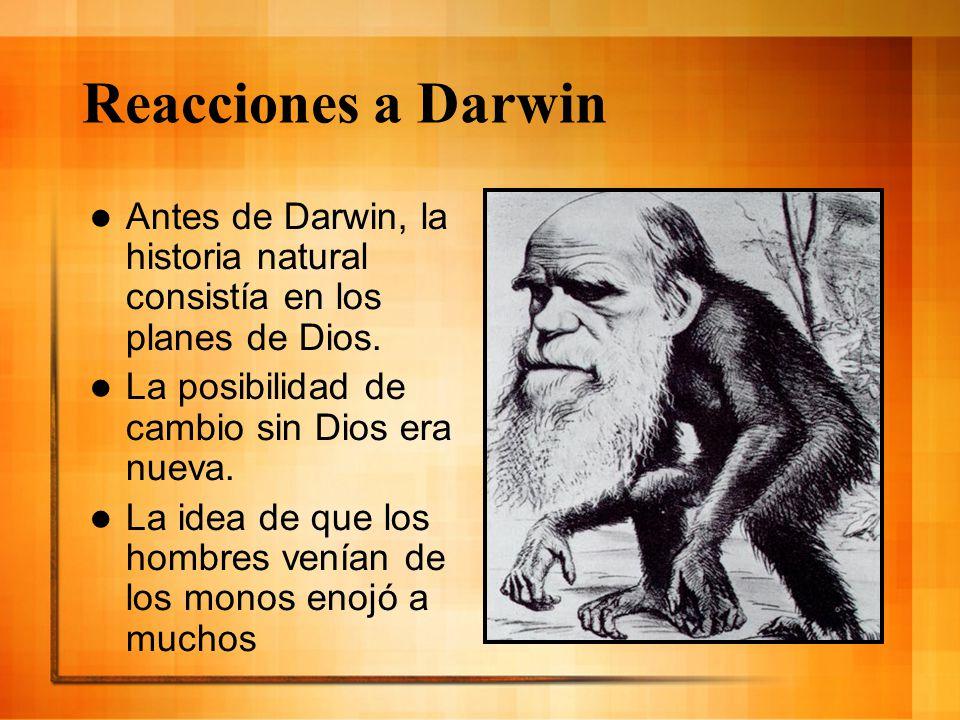Reacciones a Darwin Antes de Darwin, la historia natural consistía en los planes de Dios. La posibilidad de cambio sin Dios era nueva. La idea de que