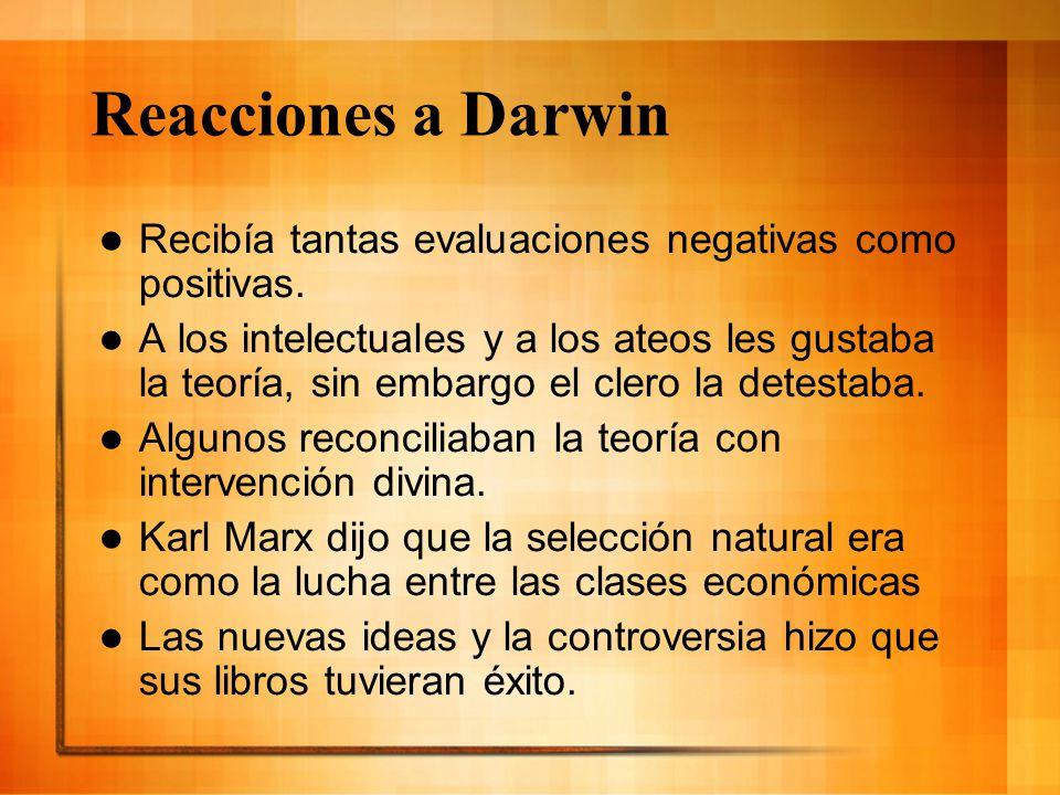 Reacciones a Darwin Recibía tantas evaluaciones negativas como positivas. A los intelectuales y a los ateos les gustaba la teoría, sin embargo el cler