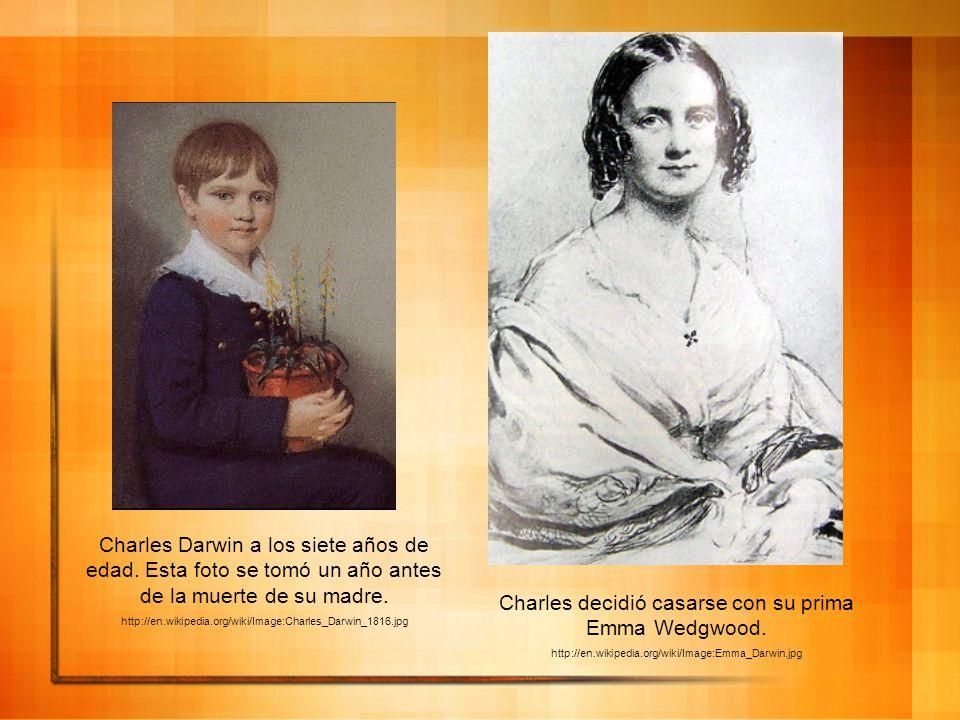 Charles Darwin a los siete años de edad. Esta foto se tomó un año antes de la muerte de su madre. http://en.wikipedia.org/wiki/Image:Charles_Darwin_18